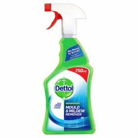 Dettol Mould & Mildew Remover