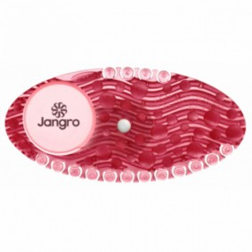 Jangro Curve Airfreshner Spiced Apple